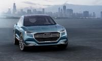 Audi Q6 7