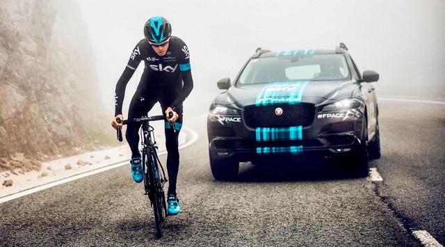 Jaguar и велосипедист