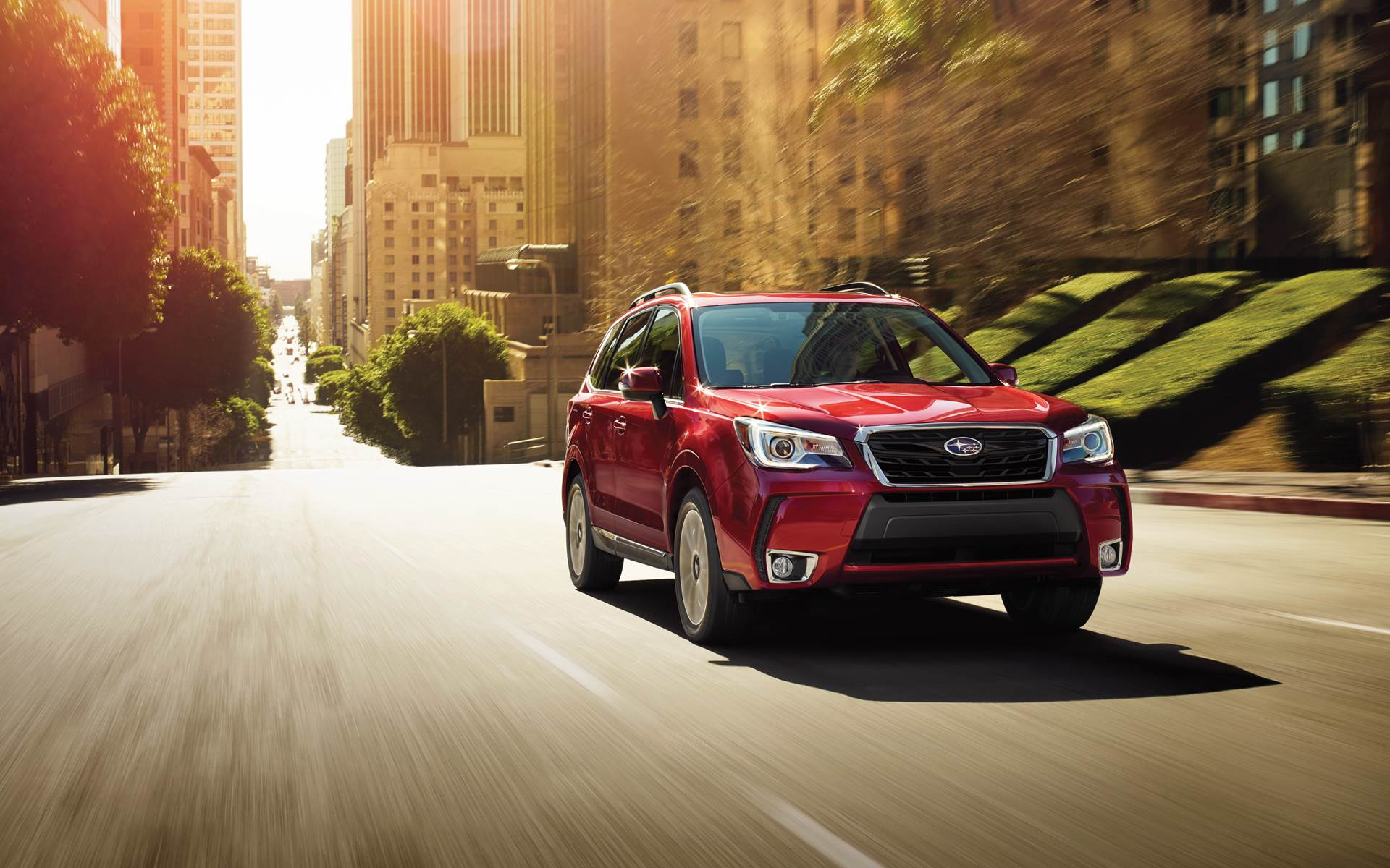 red forester